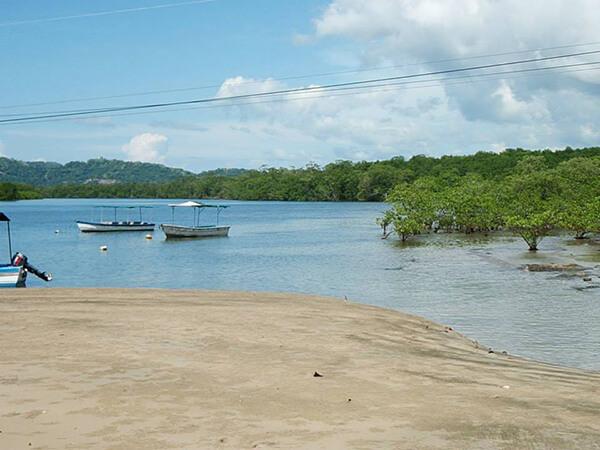 Mangroove Boat Safari